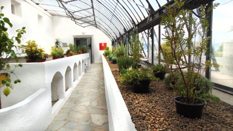 piante_serra_alta_museo_meina